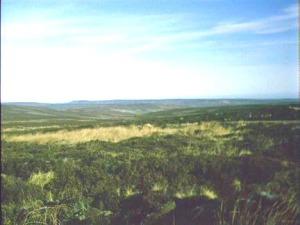 Stockdale Moor photo